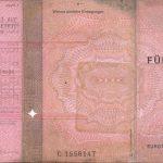 """Der """"rosa"""" Führerschein 1986 - 1998 (Vorderseite)"""
